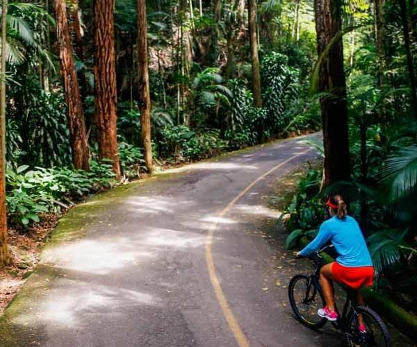 bike-tour-jungle-rio