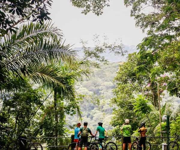 bike-tour-jungle-rj